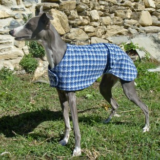 Blue Whippet Dog Coat